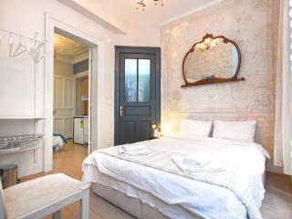 Galata-2Room-2Bath 5pp-1st floor - Istanbul vacation rentals