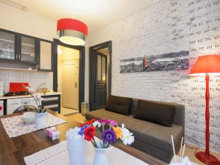 Galata-3Room-2Bath 6pp-1st floor - Istanbul vacation rentals