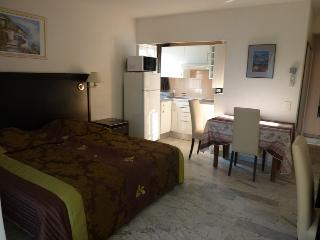 Antibes 1 Bedroom Golfe Residence with WiFi and Fireplace - Golfe-Juan Vallauris vacation rentals