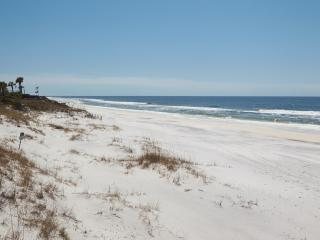 Mrs Robinson Gulf View rental 100 steps to beach. - Grayton Beach vacation rentals