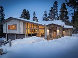 Economically Priced  4 Bedroom  - Royal Tiger Lodge - Breckenridge vacation rentals