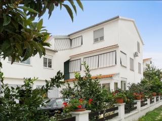 1-bedroom flat with terrace, sea view - Petrcane vacation rentals