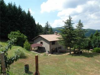 4 bedroom Farmhouse Barn with Internet Access in Anghiari - Anghiari vacation rentals