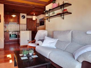 Apto. Viella - La Santeta de Aran - Vielha vacation rentals