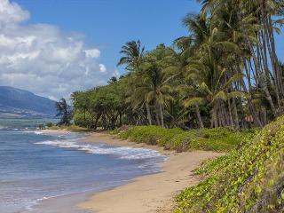 Waiohuli Beach Hale #D-220 Oceanfront Ocean View 1 Bd 1 Ba  Great Rates!! - Maui vacation rentals