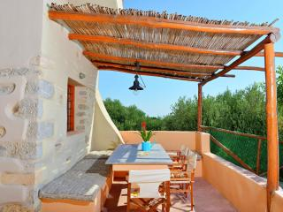 Family Villas with unique surroundings (Almond Tree 2) - Plaka vacation rentals