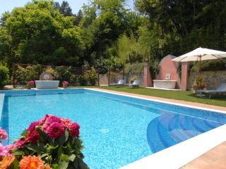 Villa San Francesco - Luxury holiday Villa - Bagni Di Lucca vacation rentals