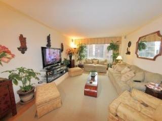 Luxury NYC apartment - New York City vacation rentals
