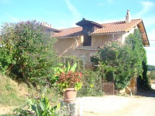 Tobacco cottage - Tocane Saint-Apre vacation rentals
