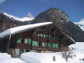 Historical chalet in the Swiss Alps near Gryon - Les Plans-sur-Bex vacation rentals