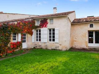 In the heart of the Charente-Maritime, spacious character house with garden - Saint-Georges-de-Didonne vacation rentals