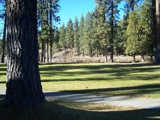 #86 PONDEROSA New to our program in 2015!!! $105.00-$140.00 BASED ON FOUR PEOPLE OCCUPANCY AND NUMBER OF NIGHTS - Shasta Cascade vacation rentals