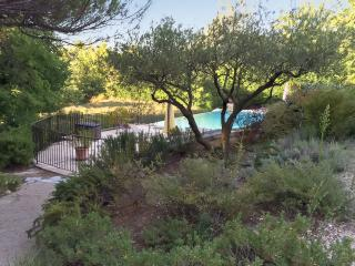 Gorgeous apartment with pool, tennis court and breath-taking views of the Ventoux mountains - Bonnieux vacation rentals