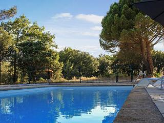 Traditional family house in Provence with swimming pool and garden - Rognes vacation rentals