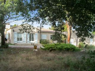 Traditional family house in Provence with swimming pool, garden and WIFI - Cucuron vacation rentals