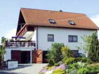 Family-friendly apartment near Dresden, Germany with 2 bedrooms, terrace and pool - Geising vacation rentals