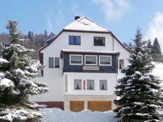 Cute 2-bedroom apartment in Thuringia, Germany, with balcony and mountain views - perfect for nature - Zella-Mehlis vacation rentals