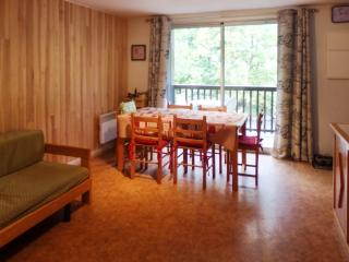 Lovely apartment in Saint-Lary with 2 bedrooms and private balcony - Sainte-Marie-de-Campan vacation rentals