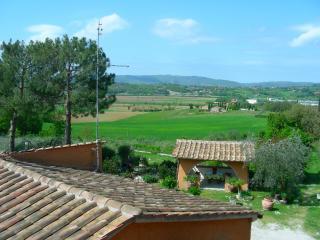AGRITURISMO MENCHETTI - appartamento IL GIARDINO - Foiano Della Chiana vacation rentals