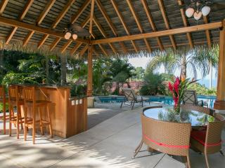 Stunning Ocean View Villa-Summer special $1000 off - Manuel Antonio National Park vacation rentals