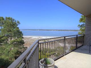 Charming 2 bedroom Hilton Head House with Internet Access - Hilton Head vacation rentals