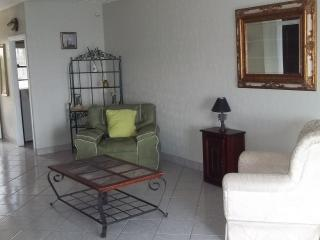 Nice Condo with Internet Access and Garden - San Isidro vacation rentals