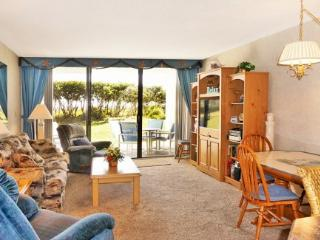 Beach Condo Rental 104 - Cape Canaveral vacation rentals