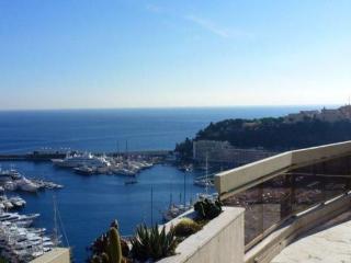 Luxury two bedrooms apartment - Monaco vacation rentals