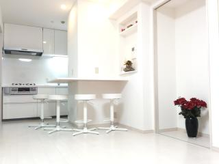 8. Posh district, beautiful / spacious 2 bed room - Minato vacation rentals