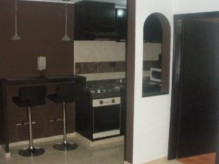 1 bedroom Condo with Internet Access in Bogota - Bogota vacation rentals