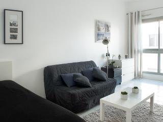 EMPLACEMENT IDEAL VIEUX PORT / AQUARIUM - La Rochelle vacation rentals