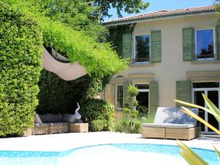 Beautiful gest house in a park with heated pool - Romans-sur-Isere vacation rentals