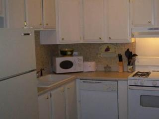 Allentown Furnished Corporate Apartment - Allentown vacation rentals