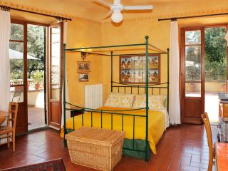 Guido - Large studio facing large terrace - Florence vacation rentals