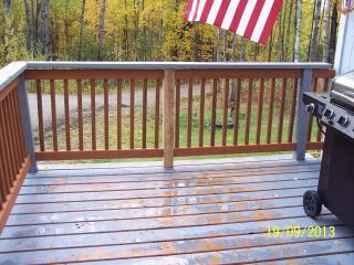In the hills of Fairbanks, Alaska - Fairbanks vacation rentals