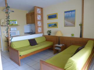 Nice apartment with WIFI, 30m from the main beach. - Biarritz vacation rentals