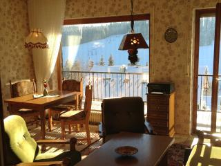 Vacation Apartment in Schoenwald im Schwarzwald (# 6078) ~ RA62630 - Schoenwald vacation rentals