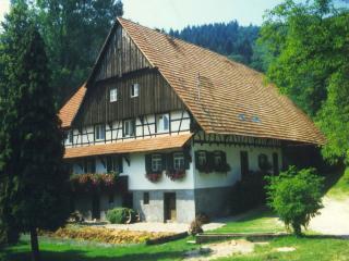 Vacation Apartment in Seebach (Baden) - 581 sqft, 1 bedroom, 1 living room / bedroom, max. 4 people… - Sasbachwalden vacation rentals