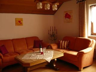 Vacation Apartment in Dachsberg - 753 sqft, max. 4 people (# 6167) - Schluchsee vacation rentals