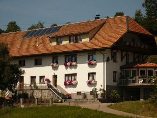 Vacation Apartment in Dachsberg - 753 sqft, max. 4 people (# 6168) - Rickenbach vacation rentals