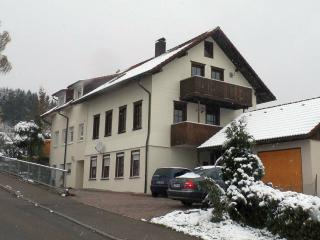 Vacation Apartment in Lindau - 431 sqft, max. 3 people (# 6259) - Bodolz vacation rentals