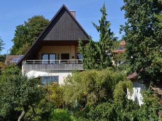 Vacation Apartment in Lahr - 1 living room / bedroom, max. 4 people (# 6262) - Lahr vacation rentals