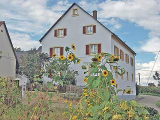 Vacation Apartment in Schallstadt - 753 sqft, max. 4 people (# 6414) - Bad Bellingen vacation rentals