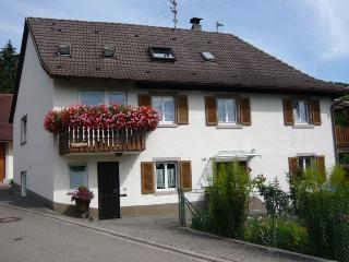 Vacation Apartment in Sölden - 431 sqft, max. 2 people (# 6435) - Bad Bellingen vacation rentals