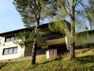 Vacation Apartment in Furtwangen - 1044 sqft, 2 bedrooms, max. 3 people (# 6433) - Black Forest vacation rentals