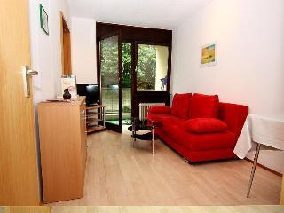 Vacation Apartment in Freiburg im Breisgau -  (# 6452) - Kenzingen vacation rentals