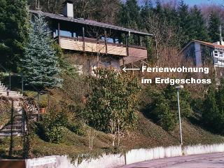 Vacation Apartment in Ettenheim - 280 sqft, max. 3 people (# 6463) - Freiburg im Breisgau vacation rentals