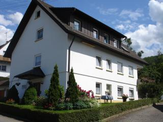 Vacation Apartment in Sölden - 484 sqft, max. 3 people (# 6473) - Black Forest vacation rentals