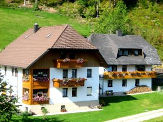Vacation Apartment in Triberg im Schwarzwald - 624 sqft, 2 Bedroom (# 6479) - Black Forest vacation rentals