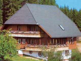 Vacation Apartment in Schonach im Schwarzwald - Type B, 1 living room / bedroom, max. 3 people (# 6498) - Schonach vacation rentals